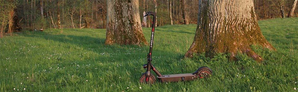 E-Wheels E2S V2 Pro 2021 - Stående i naturen en sen vårdag